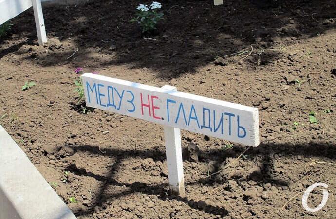 «Медуз не гладить»: на одесской набережной вырастили «мотивационную» поляну (фото)