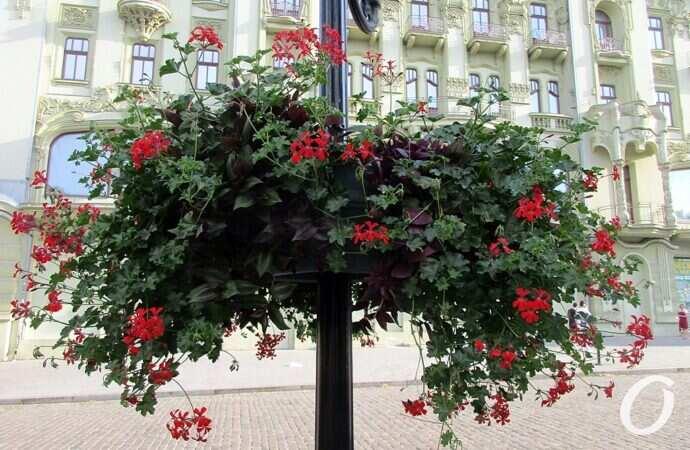 Погода в Одессе 30 августа: лето еще держится