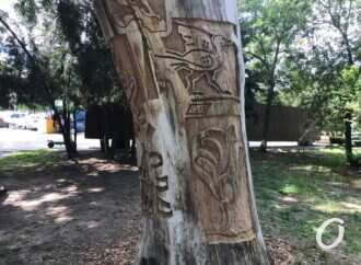 В Одессе на Ланжероне «выросло» арт-дерево (фото)