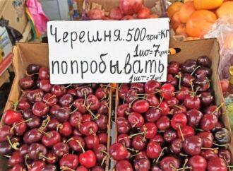 """Черешня в Одессе """"бриллиантовая"""", потому что потерян урожай"""