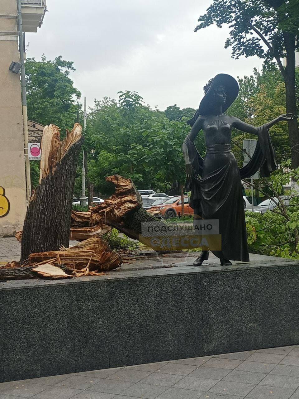 В центре Одессы упало дерево