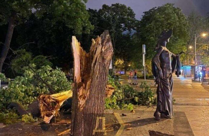 В центре Одессы упавшее дерево чудом не задело памятник Вере Холодной (фотофакт)