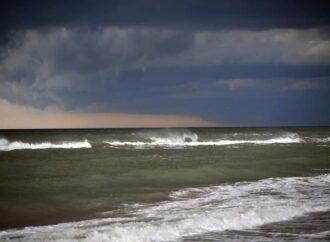 Одесское побережье накрыл «оливковый прилив» – море зацвело