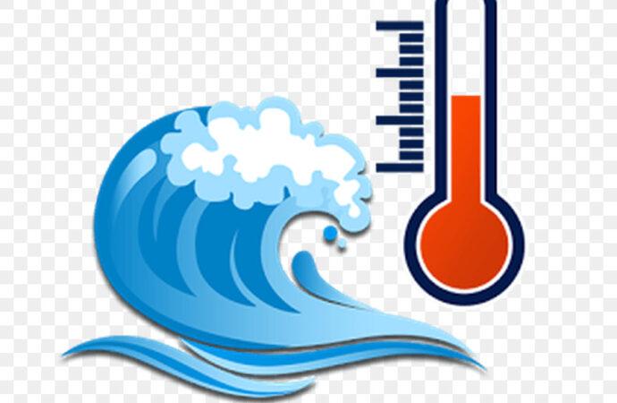 Температура морской воды в Одессе 6 августа: идти ли в пятницу на пляж?