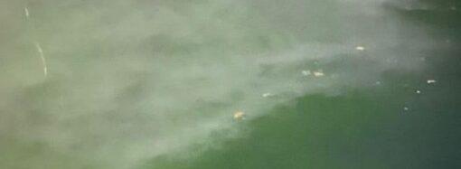 Одесский отель «Немо» сливает нечистоты в море? (фото)