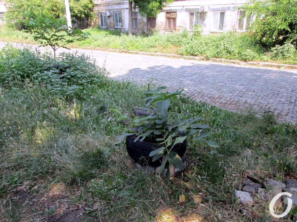 Занделовский переулок6