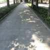 На одесском Приморском бульваре постепенно преображаются тротуары (фото)