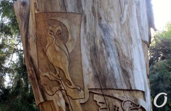 Пушкин, мудрая сова и рога на вершине: в Одессе из стволов «почивших» деревьев создают креатив (фото)
