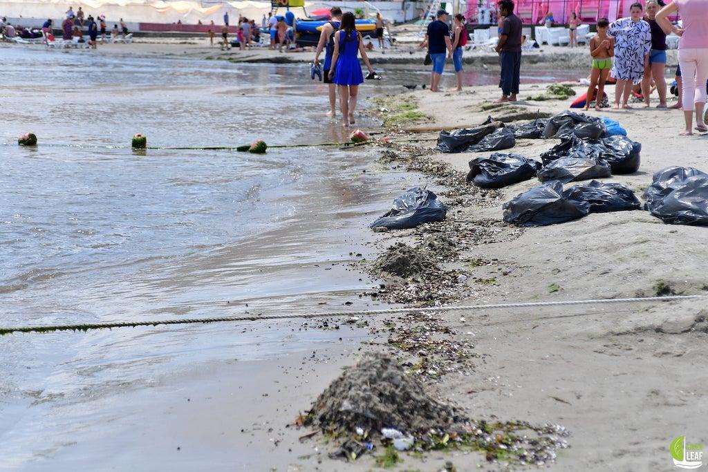 Аркадия пляж настил