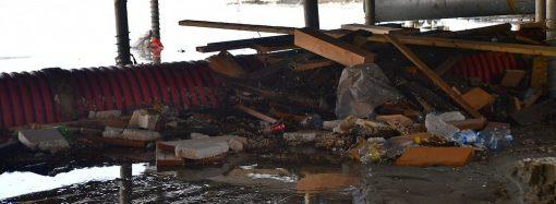 Мертвые крысы, фекалии и мусор: что скрывает настил в Аркадии?