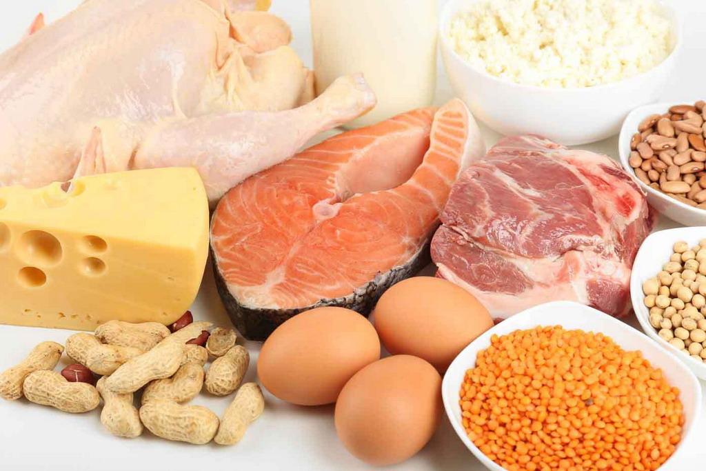 еда содержащая белки