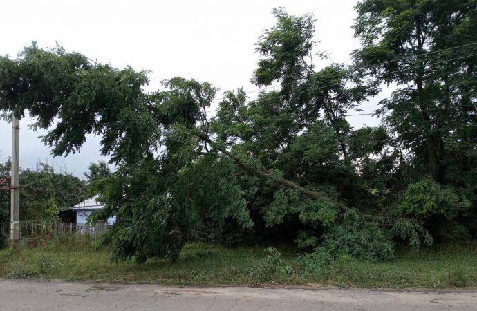 Ливень оставил без света 23 населенных пункта в Одесской области и часть Одессы