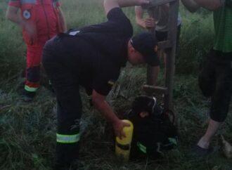 Колодец смерти: в Одесской области погибли мальчик и спасавший его отец (фото)