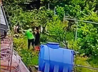 Появилось видео и новые подробности того, как преступник избил лопатой мать представителя МВФ
