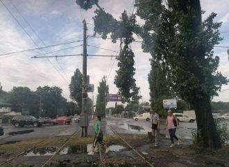 Стихия в Одессе: часть общественного транспорта не ходит