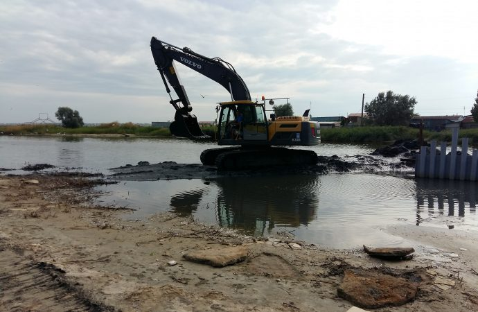 Одесские экологи бьют тревогу: массовый мор рыбы угрожает курорту