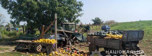Под Одессой автоледи влетела в прилавок с арбузами и травмировала девочку-подростка (фото, видео)
