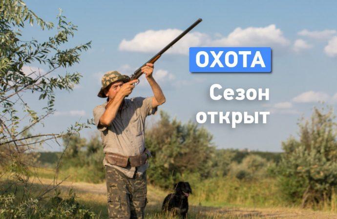 В Одесской области открылся сезон охоты на пернатых: что нужно знать