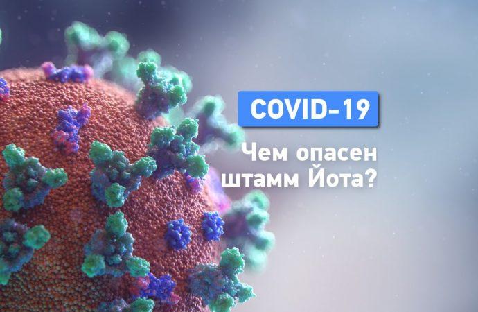 Штамм коронавируса «Йота»: что о нем известно?
