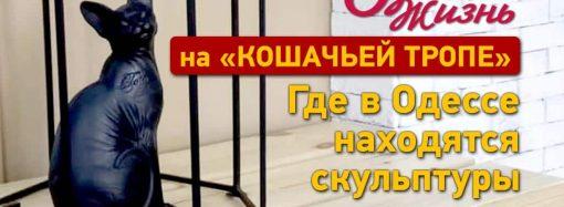 Одесские котоскульптуры: в путь по Кошачьей тропе (+карта)