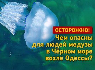 Опасно, но не смертельно: чем угрожают людям медузы в море возле Одессы? (видео)