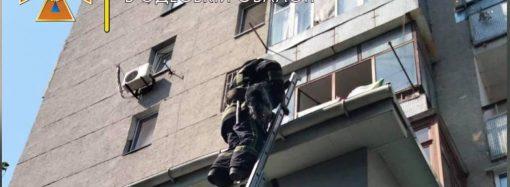 В Одессе пожарные спасли пса, упавшего с 6-го этажа (фото)