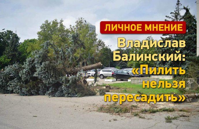 Эко-активист Владислав Балинский: «Пилить нельзя пересадить»