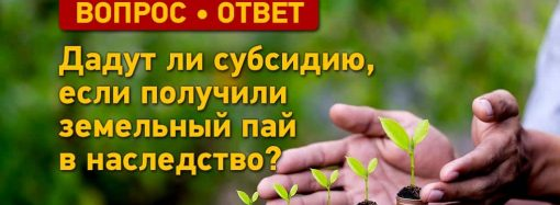 Вопрос – ответ: дадут ли субсидию, если получили земельный пай в наследство?