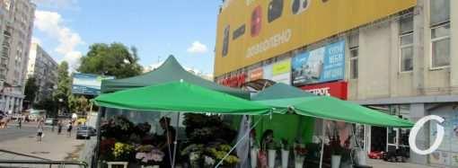 Торговля цветами у Привоза: где теперь приобрести нежный товар? (фото)