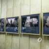 Все снято банкой из-под кофе: в Одессе открылась необычная фотовыставка (фото)