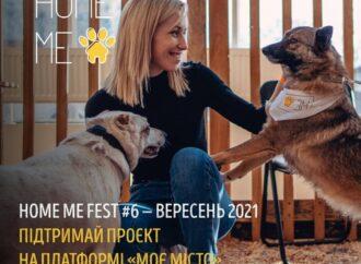 В Одессе пройдет фестиваль четырехлапых друзей
