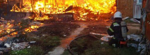 В Одесской области загорелась база отдыха