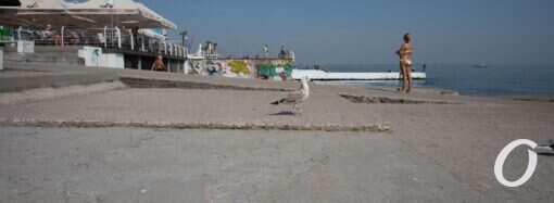 Температура морской воды 21 сентября: вода будет теплее воздуха