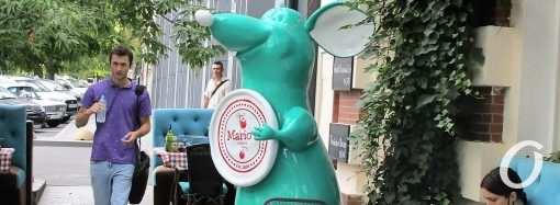 Одесские штучки: на Большой Арнаутской «прописалась» большая крыса