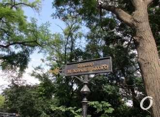 С улицы Гоголя убрали ограждение, ведущее на бульвар Жванецкого: что изменилось?