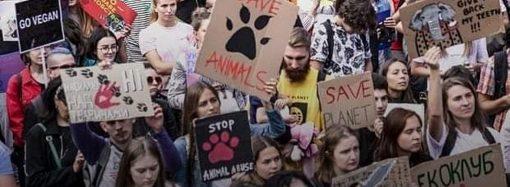 В Одессе пройдет марш против издевательств над беззащитными животными