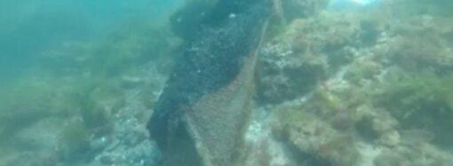 В море у пляжа «Дельфин» убрали обломки Delfi: уже можно купаться?