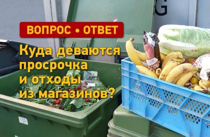 Вопрос — ответ: куда деваются просрочка и отходы из магазинов?