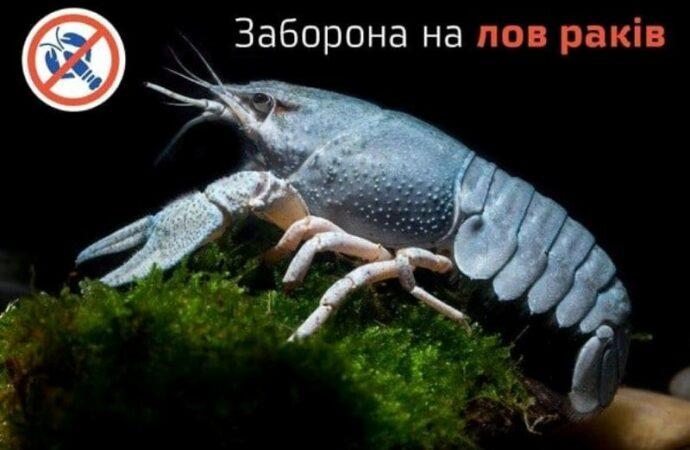 В Одесской области запретили ловить раков