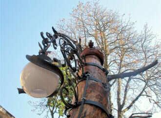 В одесском дворе ствол старого дерева превратили в светящийся арт-объект (фото)