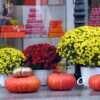 Погода в Одессе 23 октября: прогноз на субботу
