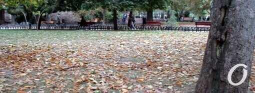 Погода в Одессе 25 октября: каким будет понедельник