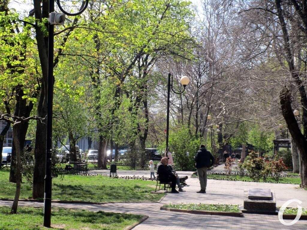 Александровский проспект2