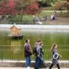 Октябрь по-одесски: осенние переливы в парке Победы (фоторепортаж)