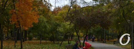 Октябрь по-одесски: красивая осень в парке Горького (фоторепортаж)