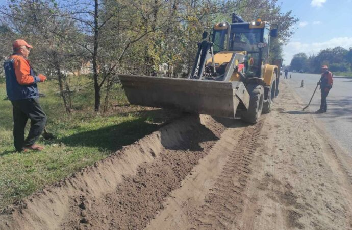 Въезд в Одессу украсит живая изгородь из 16 тысяч кустов