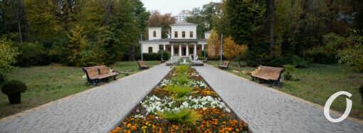 Осень в Одесском ботаническом саду: вместе с деревьями увядает и архитектура (фоторепортаж)