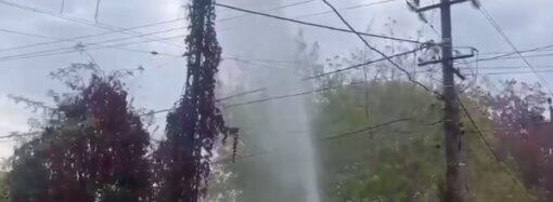 На Даче Ковалевского забил фонтан высотой в шесть метров (видео)