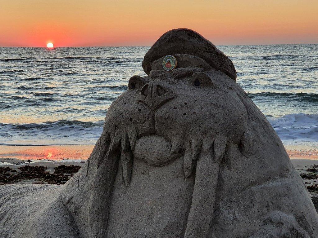Песочный морж3