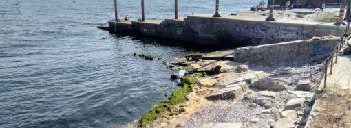 Пляж на Ланжероне: последнее пока еще дикое место (фото)